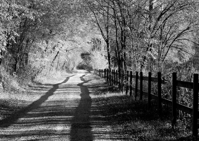 country-road-black-and-white-anne-barkley